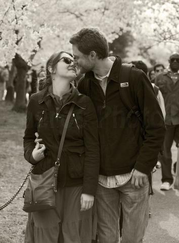 Couple Kissing While Walking & Enjoying The Cherry Blossom